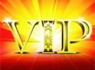 VIP私人订制课程